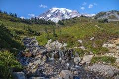 Mount Rainier, strömmen och alpina ängar från horisonten skuggar royaltyfria bilder