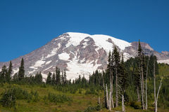 Mount Rainier in the Summer Stock Photography