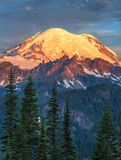 Mount Rainier at sunrise in Mount Rainier National Park Stock Photos