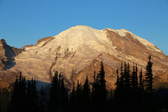 Mount Rainier at sunrise Royalty Free Stock Photo