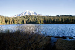 Mount Rainier view from reflection lake Royalty Free Stock Photo
