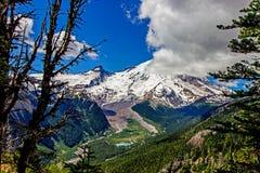 Mount Rainier vulkanlandskap med glaciären som ses från monteringen Rainier National Park i Washington State USA arkivfoto