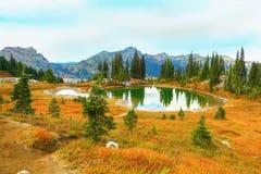 Mount Rainier, Washington Royalty Free Stock Photos