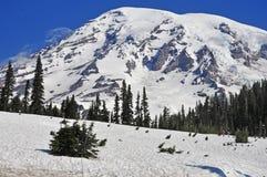 Mount Rainier, Washington, USA Stock Image