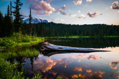Mount ranier. Lake in front of mount ranier Royalty Free Stock Images