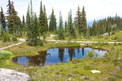 Mount Revelstoke Pond Stock Photo