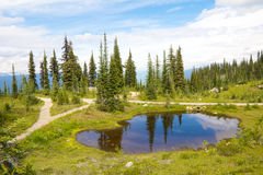 Mount Revelstoke Pond Royalty Free Stock Images