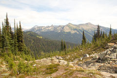 Mount Revelstoke View Stock Image