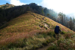 Mount Rinjani Royalty Free Stock Photos
