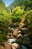 Mount River. Running mount river. beauty of nature stock photography