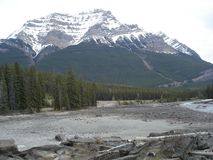 Mount Robson. This mountain is close to Jasper, Alberta in the Canadian Rockies. The view is in early Spring Royalty Free Stock Photo