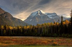 Mount Robson in autumn Royalty Free Stock Photography