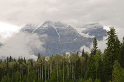 Mount Robson Royalty Free Stock Photos