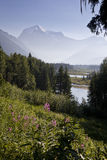 Mount Robson, Canada Royalty Free Stock Images