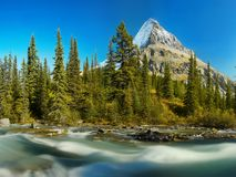 Mount Robson  Canadian Rockies Royalty Free Stock Image
