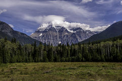 Mount Robson with her head in the clouds. Mount Robson with green field in front of her and head in the clouds Royalty Free Stock Images