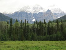 Mount Robson Royalty Free Stock Photo