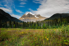 Mount Robson Stock Image