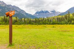 Mount robson view in summer royalty free stock photos