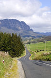 Mount Roland, Tasmania, Australia Royalty Free Stock Photos