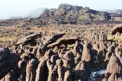 Mount Roraima Landscape Royalty Free Stock Photography