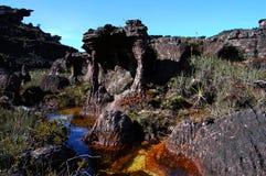 Mount Roraima - Venezuela Royalty Free Stock Image