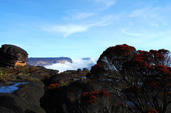 Mount Roraima - Venezuela Royalty Free Stock Photography