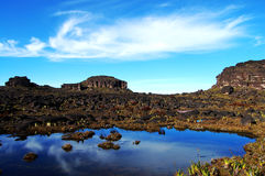Mount Roraima - Venezuela Royalty Free Stock Images