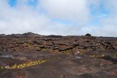 Mount Roraima - Venezuela. Strange geology on top of the mountain Royalty Free Stock Image