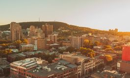 The mount royal royalty free stock photo