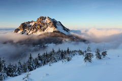 Mount Rozsutec at winter Royalty Free Stock Photo