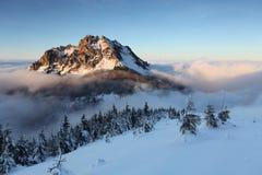 Mount Rozsutec at winter Royalty Free Stock Photo