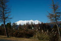Mount Ruapehu, from National Park, New Zealand. Stock Image