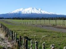 Mount Ruapehu Royalty Free Stock Photos