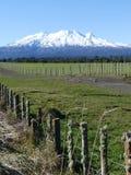 Mount Ruapehu Stock Images