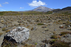 Mount Ruapehu, New Zealand Stock Images