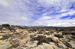 Mount Ruapehu, North Island, New Zealand Royalty Free Stock Photography