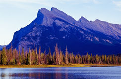 Mount Rundle Royalty Free Stock Images