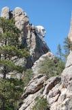 Mount Rushmore från sidan Royaltyfri Bild