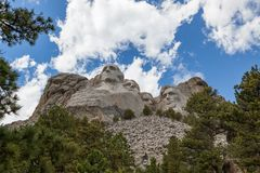 Mount Rushmore Framed By Pine Trees. Blue sky and white fluffy clouds provide a striking back drop for the carved faces of four famous United States Presidents stock photo