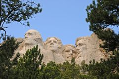 Mount Rushmore Framed by Trees. Mount Rushmore Against Blue Sky Framed by Pine Trees Royalty Free Stock Photos