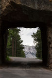 Mount Rushmore view Stock Images