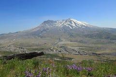 Mount Saint Helen Royalty Free Stock Photo