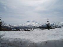 Mount Saint Helens Fotografia de Stock Royalty Free