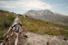 Mount Saint Helens Royalty Free Stock Images
