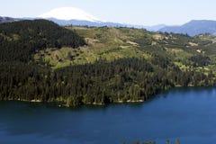 Mount Saint Helens View Stock Photo