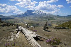Mount Saint Helens Washington, USA arkivfoton