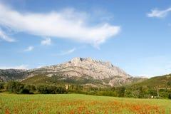 Free Mount Sainte Victoire And Poppies. Royalty Free Stock Photos - 115810868