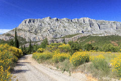 Mount Sainte Victoire and Flowers Royalty Free Stock Images