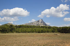 Mount Sainte Victoire in Provence Stock Photography
